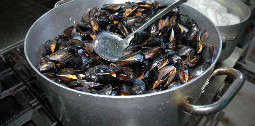 cozza mussels muscheln