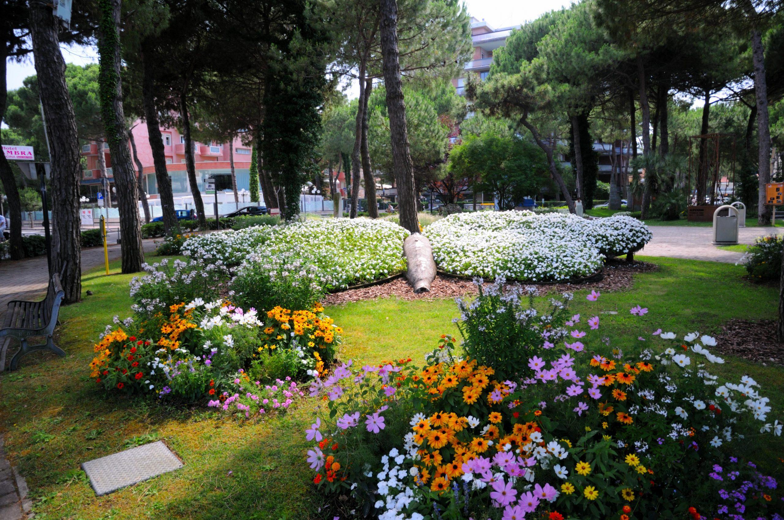 Maggio in fiore bloom blume