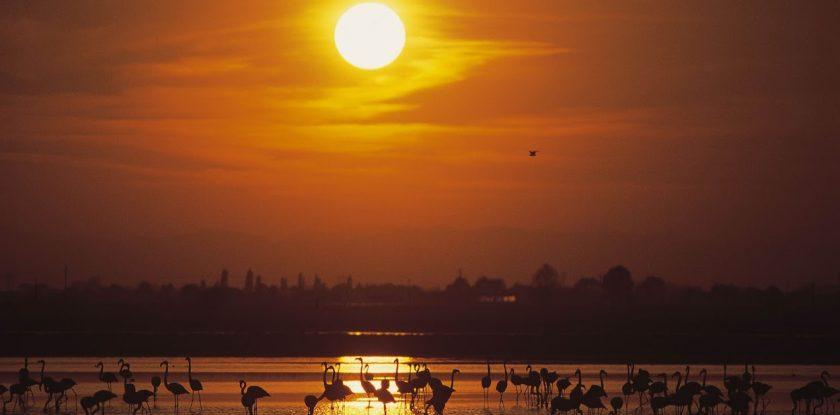 tramonto sunset Sonnenuntergang