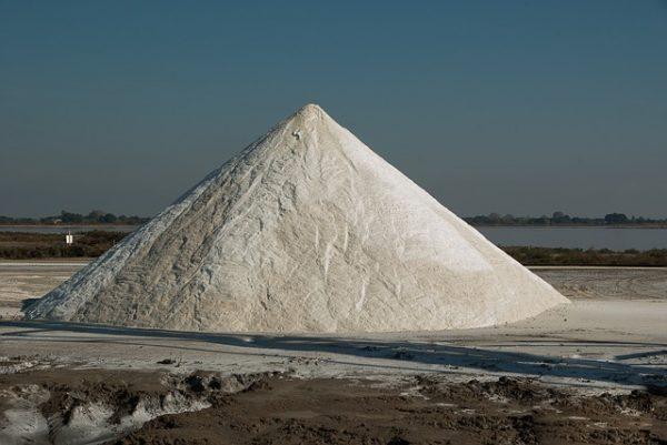 Flavor of Salt