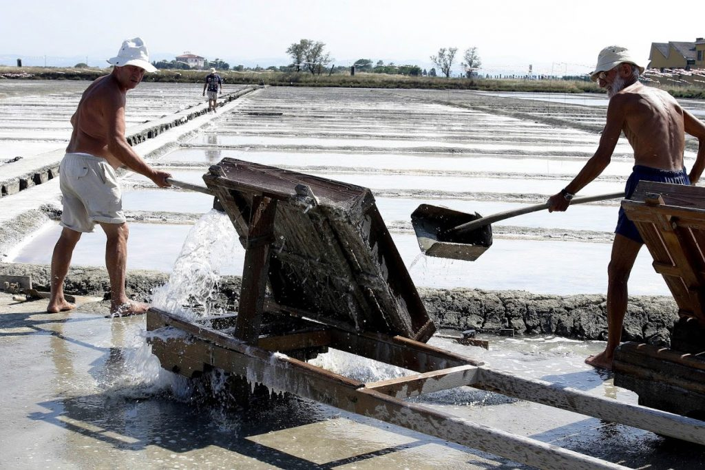 Camillone saltpan: guided tours