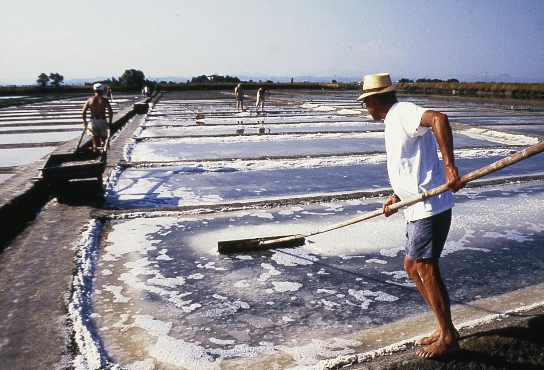 Salinaro saltworker salinen