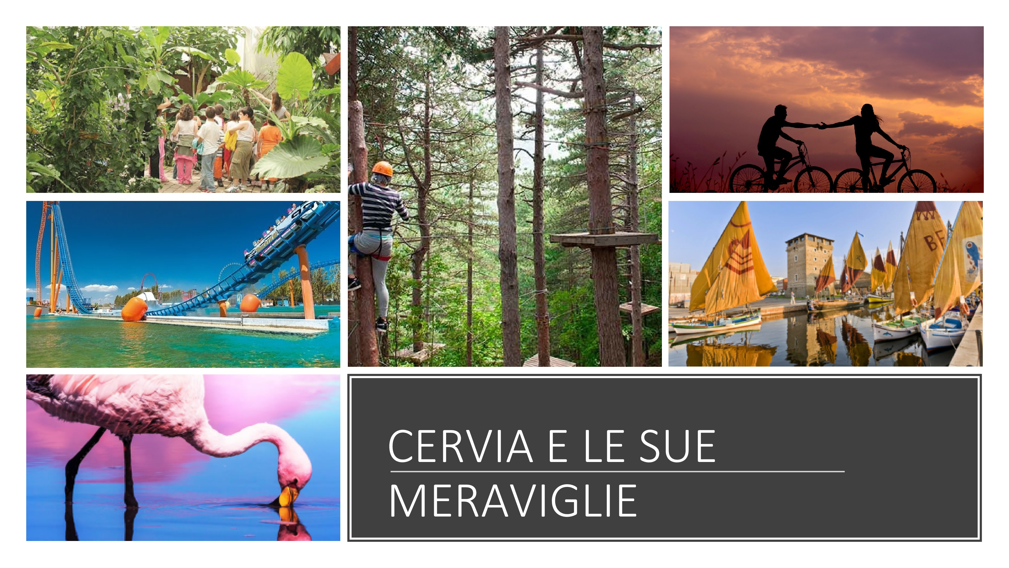 What to do in cervia