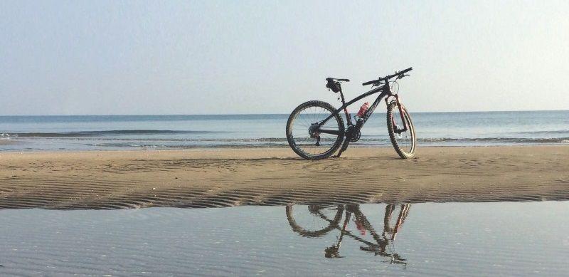bici bike fahrrad